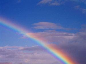 Meetup Rainbow